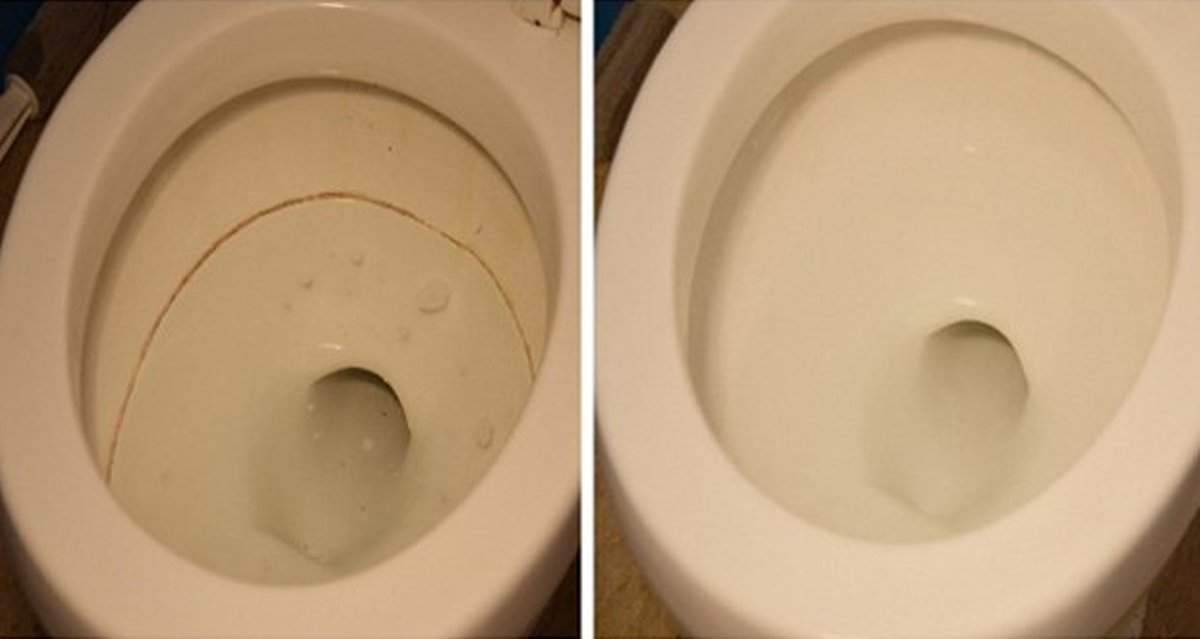 Effectively Disinfect Your Toilet With These Two Natural Products